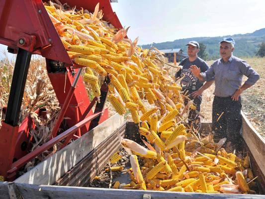 Регистрација и обнова регистрације пољопривредних газдинстава до 31. марта 2013. године