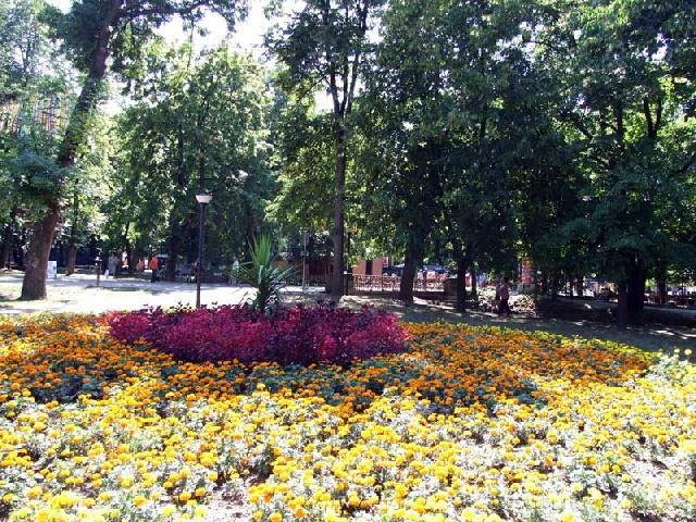 cvece u parku vrnjacke banje