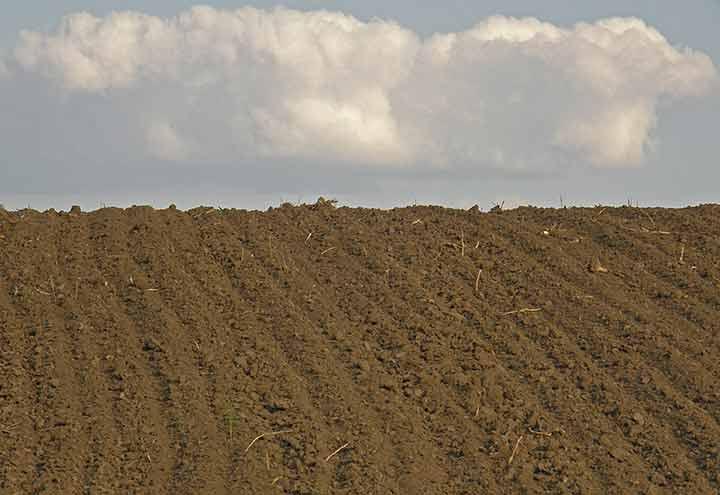 Akcija analize zemljišta